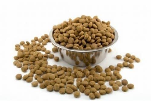 рейтинг сухого корма для кошек