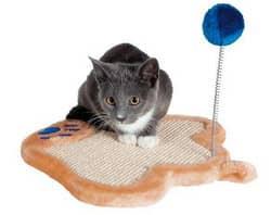 как отучить кота драть диван