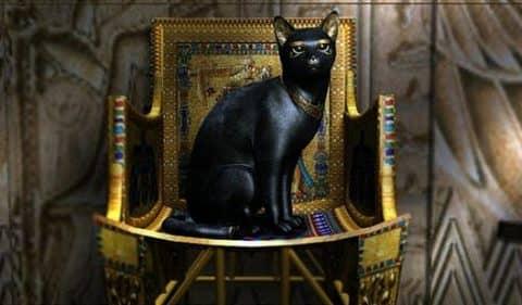 священная кошка Египта